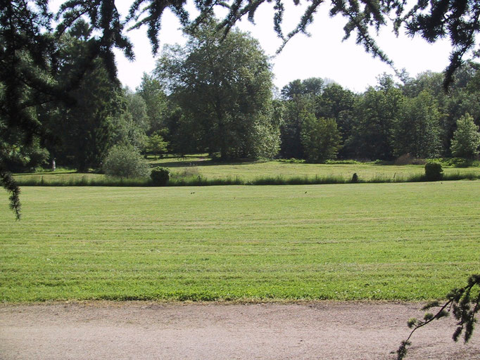 views on the park from the gite