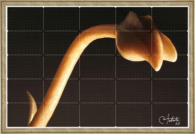 ラベル版画™『セロフラワー.4』/ 2013年制作 / 16mm丸ラベル 5,241片 / 96×64cm