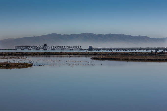 Dumbarton Rail Bridge (Fremont to Menlo Park), California, USA (2015)