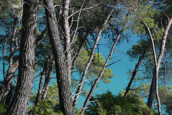 National Park Mljet, Croatia (2012)