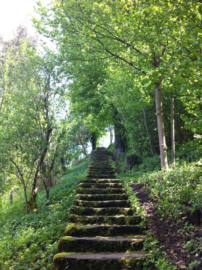 Weg zum Schloss Lenzburg AG, Foto C. Röthlisberger-Abächerli