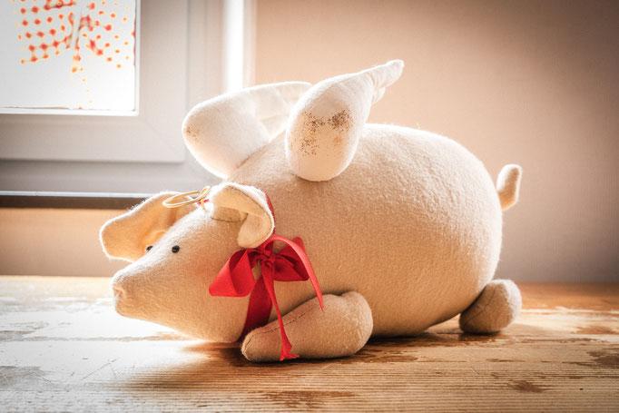 Glücksschwein 25,00€