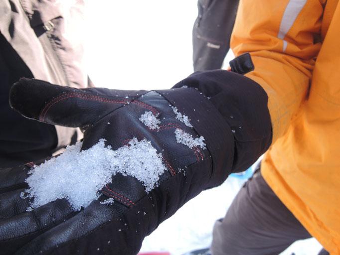 Observation de la qualité de la neige