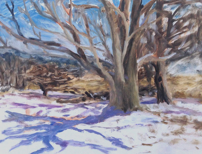 Cox Reservation tree, plein air, Oil on board, 11 x 14 in.