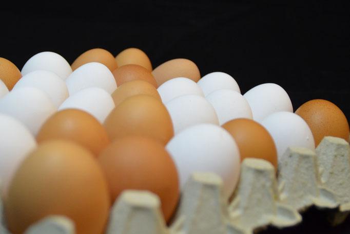 Eier von Schröters Hof in Pfaffenhofen