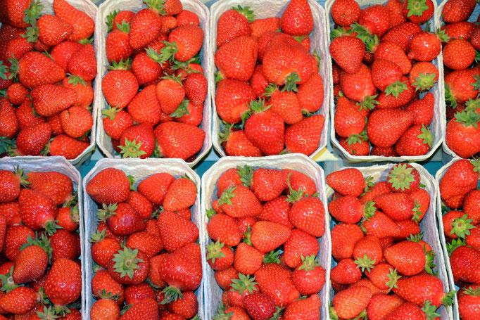 Erdbeeren aus Gustenfelden