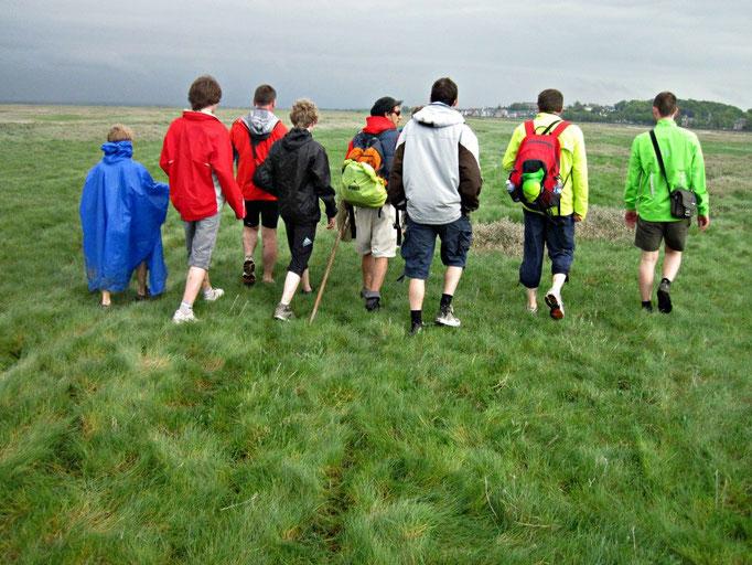 Traverser la Baie de Somme avec votre guide+ prés salé