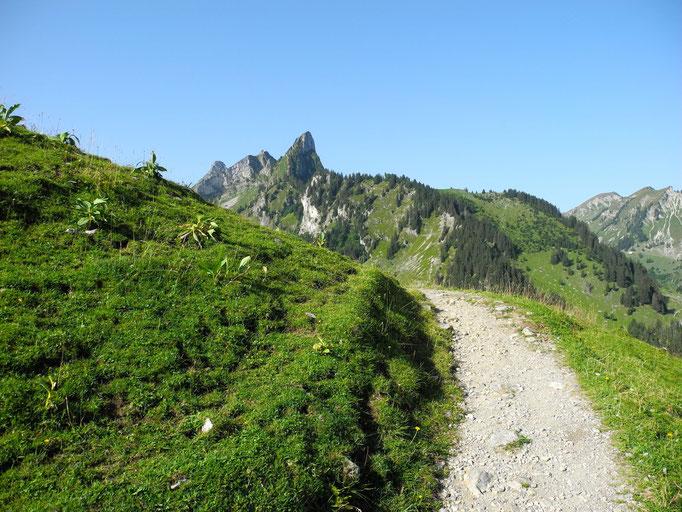 Von der Riggisalp Richtung Stierenberg unterwegs.