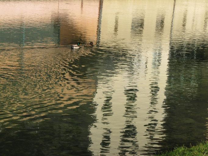 reflets dans la Bourne à Pont-en-Royans.....