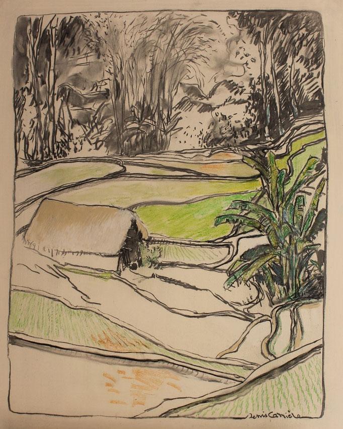 32- Vietnam, rizières, Technique mixte (fusain, pastel, huile), format 60 cm x 73 cm, prix : 680 €