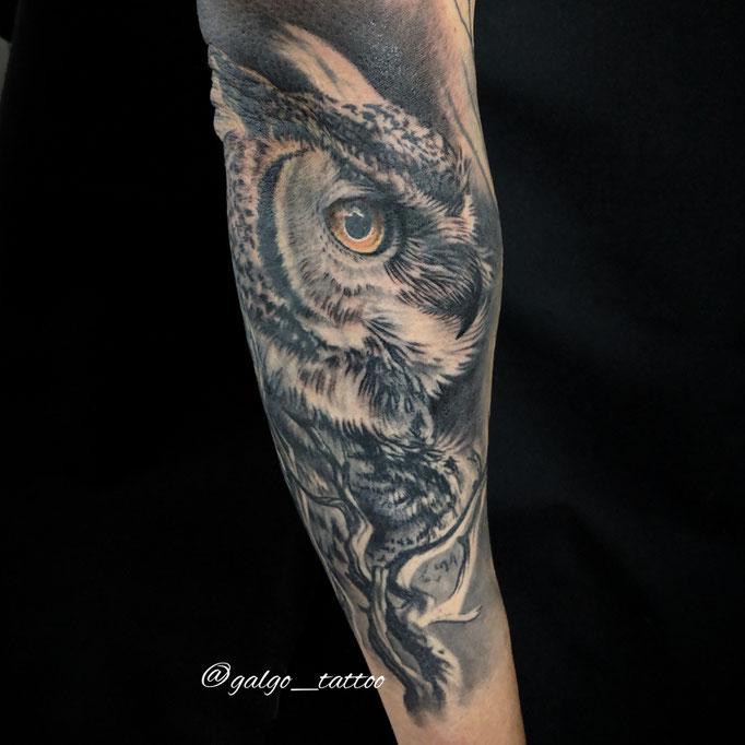 tatuaje realista de un búho en el antebrazo. Hecho en Cartagena.