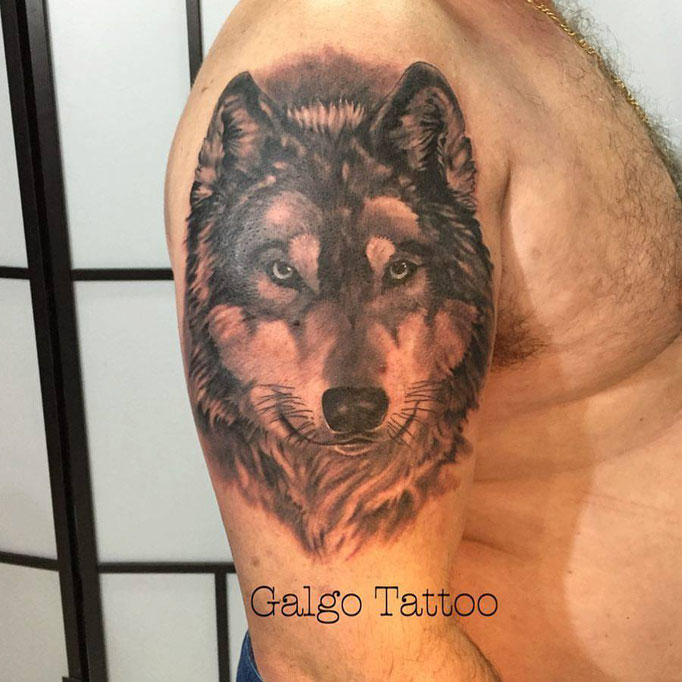 Black and Grey Portrait Tattoo of a Wolf.