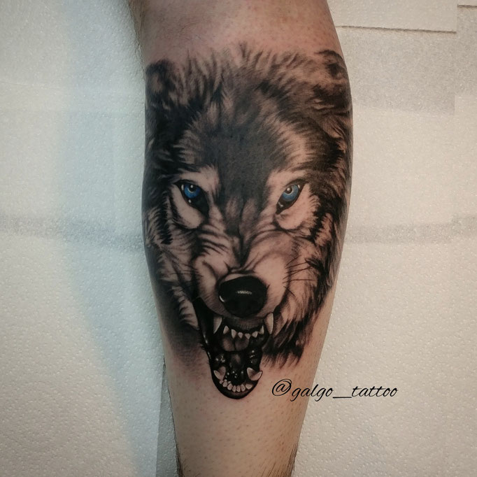 Realistic angry wolf tattoo on the leg.