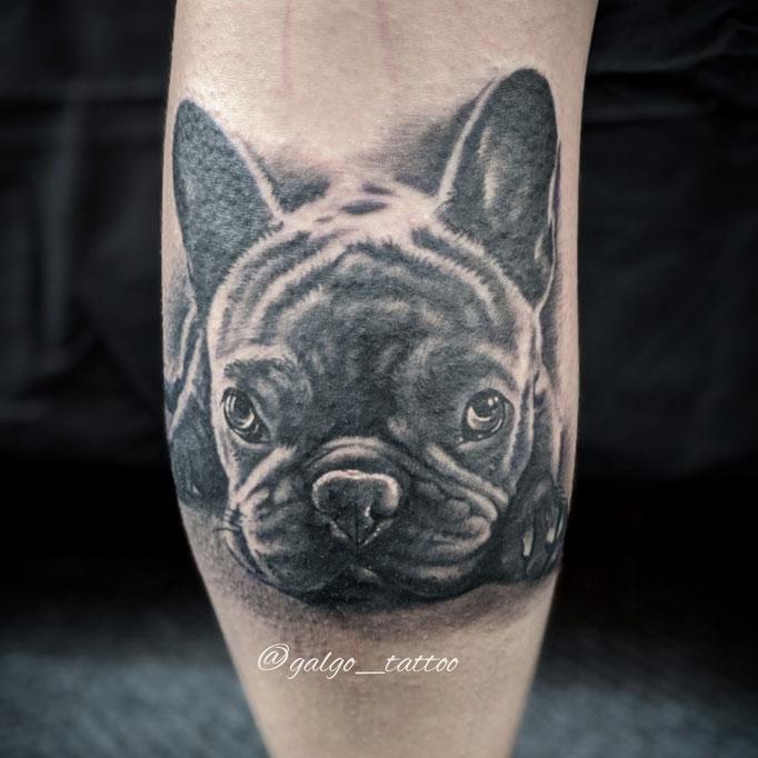Retrato de un bulldog francés en tatuaje de realismo blanco y negro.