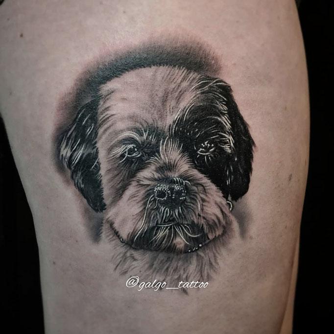 Tatuaje realista de un perro, hecho en knowmadink, Santa Brígida.