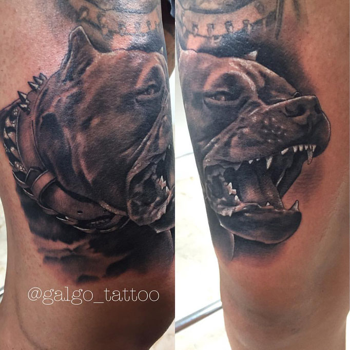 Black and grey realistic tattoo of a furious pitbull.
