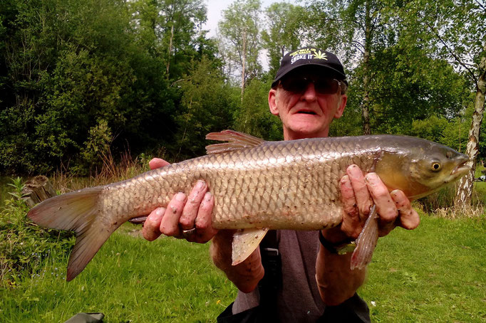 Ron Seal and his rare to Ashmoor Grass Carp (May 2016)