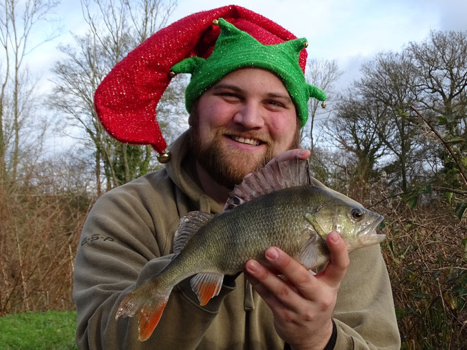 Steve with a Christmas Perch at 1lb 7oz