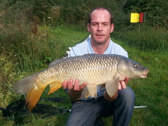 Robbo's amazing 16lb Common Carp. One of 20 fish caught in the fishing session