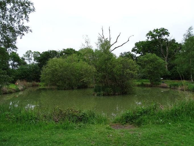 Lake 2 (photo by Steve Self)