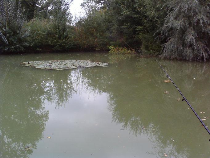Lake 3 fishing hotspot (sent by Amanda Best)