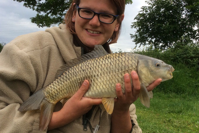 Sarah's 2nd ever carp, a lovely common (June 2015)
