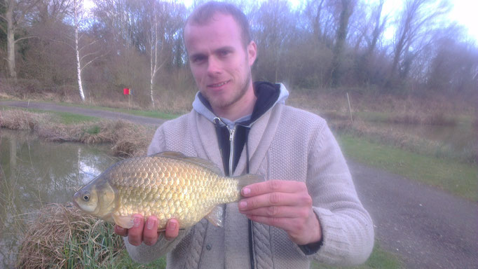 Jamie's Crucian/Goldfish cross