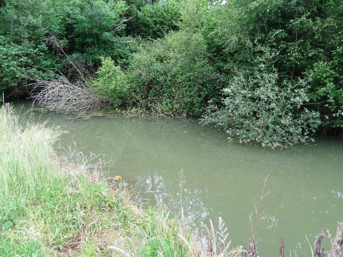'The Canal' Lake 3 (photo by Steve Self)