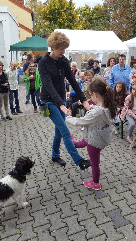 Vorführung Therapiehund