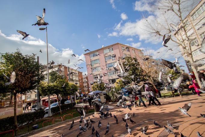 Kadıköy, Istanbul. February 2016.