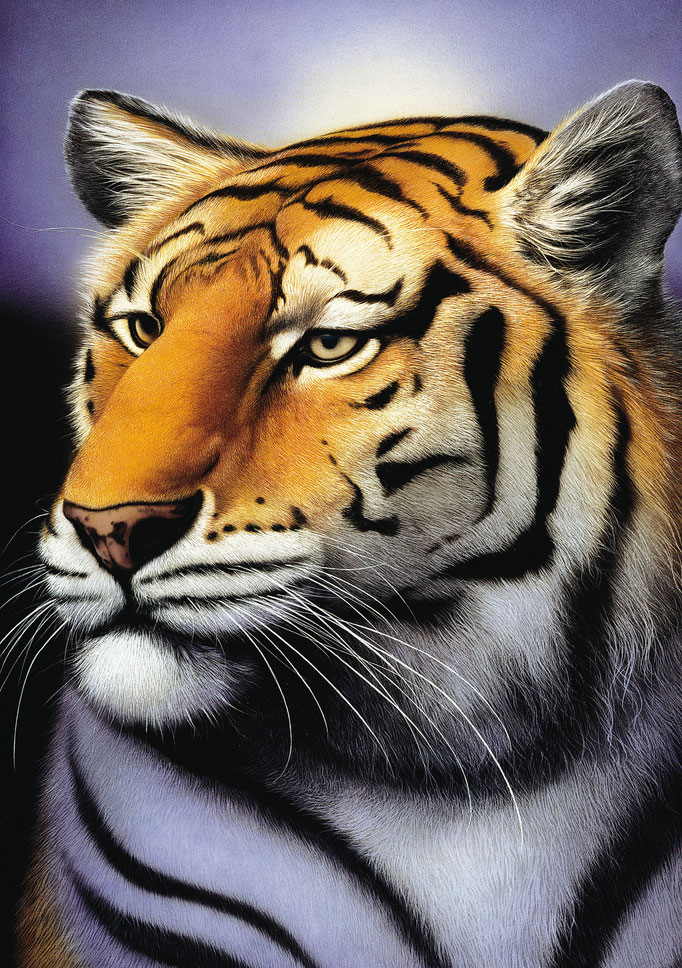 Der Tiger - Carl-W. Röhrigs Classics