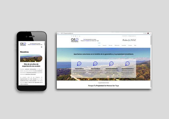 Diseño y desarrollo Web para GeoPropiedad