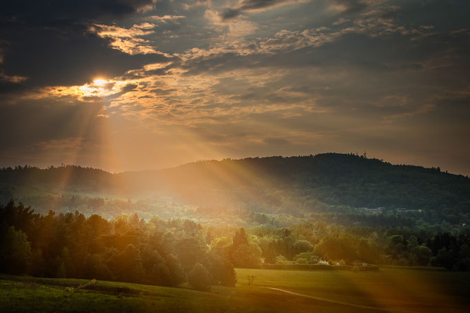 Sonnenstrahlen am Abend im Harz