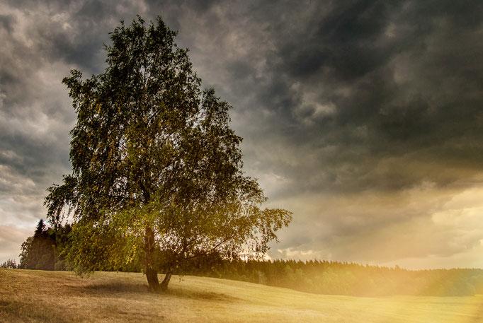 Eine Landschaft mit Sonnenstrahlen und dunklen Wolken