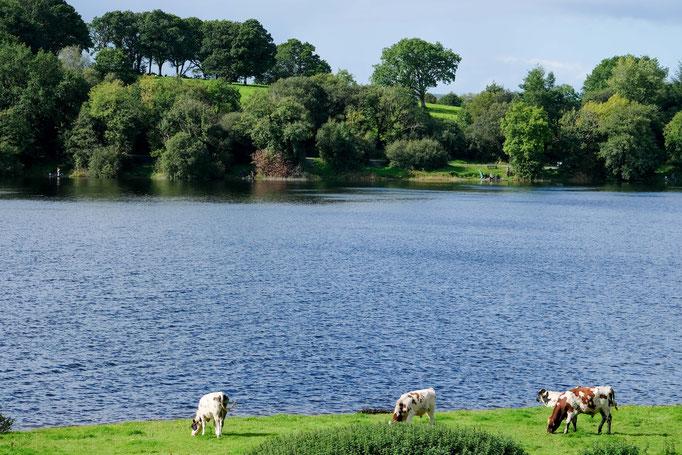 Garadice Lough Bay