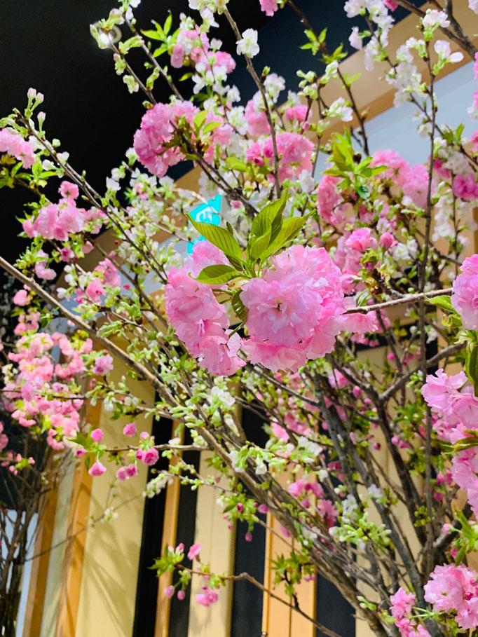 八重桜の生け込み