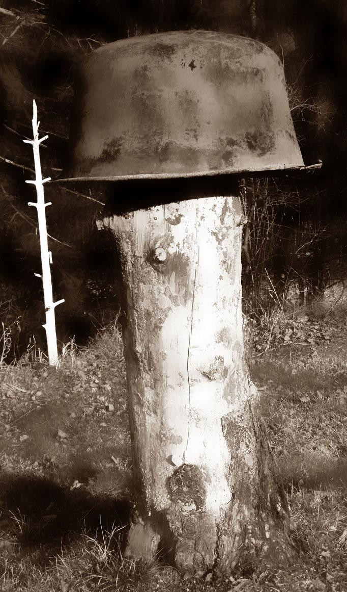 Baum Helm - casco albero