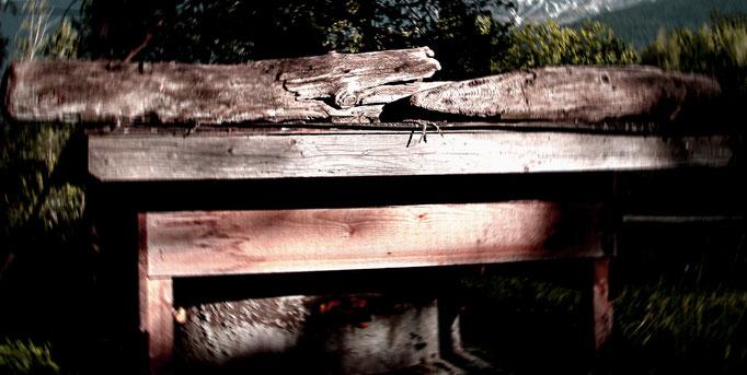 altes Holz + old wood + legno vecchio
