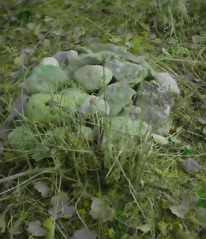 sanftes grün - verde morbido - velvet green