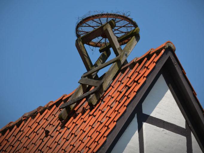 Ein Storchennest gebaut von der 3B Denkmalpflege & Bausanierung GmbH