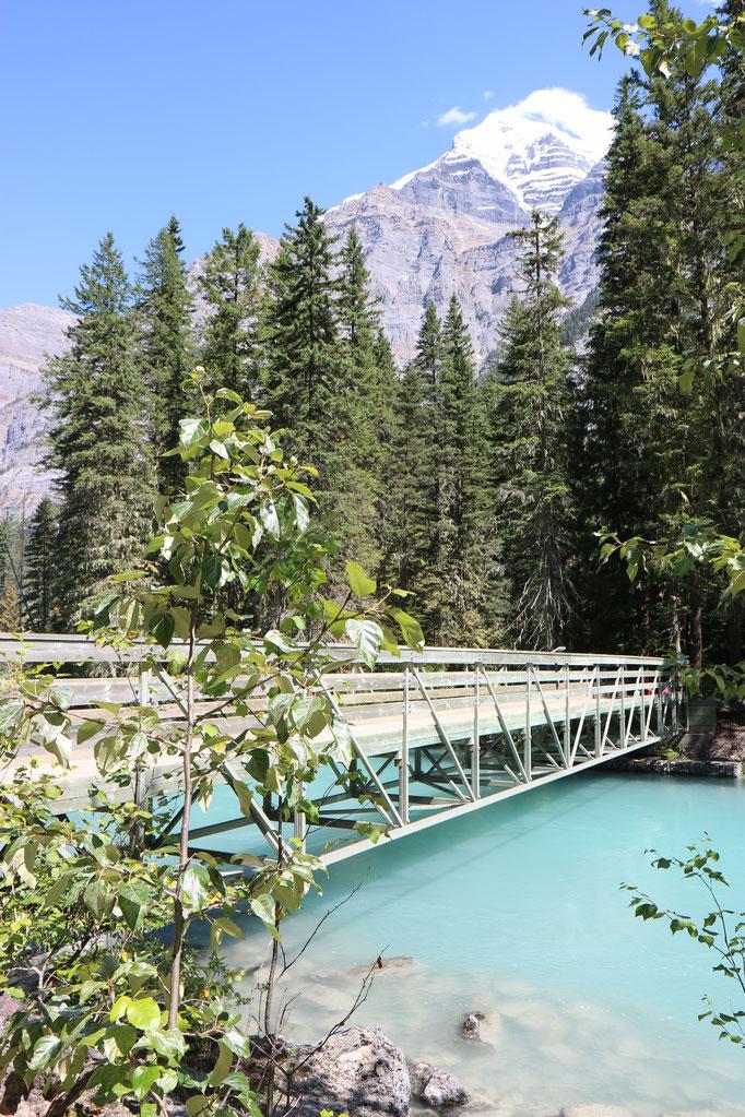 Robson River, Berg Lake Trail, Parc Provincial du Mont Robson