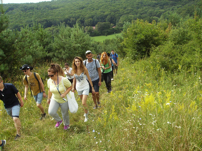 Group walk to explore the nature