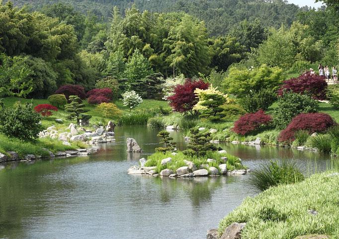 Bambouseraie d'Anduze superbes jardins