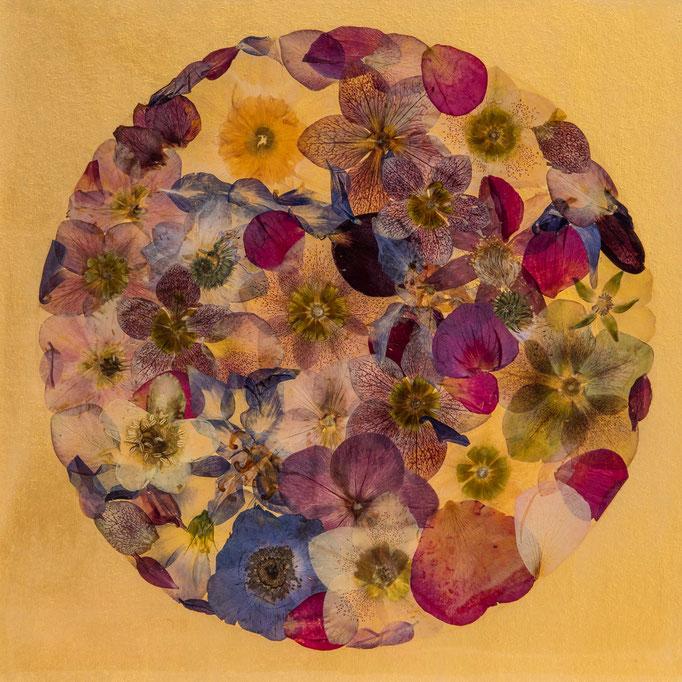 Planet Blütenreich 30 x 30