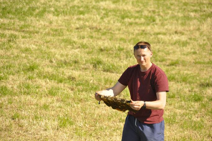 Unser Imker Herr Radtke aus Schmölau hat seine Bienen bereits in Position gebracht