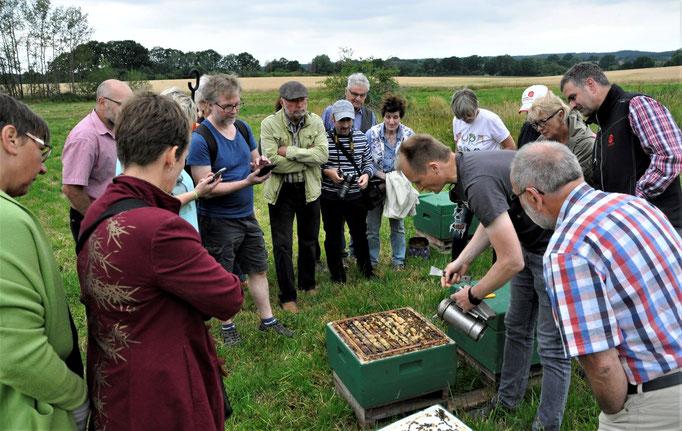 """Pressetermin 06.07.2019: Imker Björn Radke zeigt, was die Bienen aus dem Projekt """"herausholen"""""""