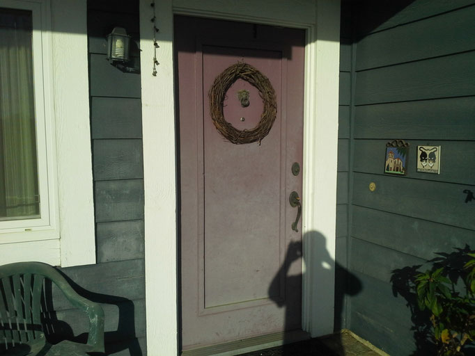 Purple Door has faded but no blisters after 9 years.
