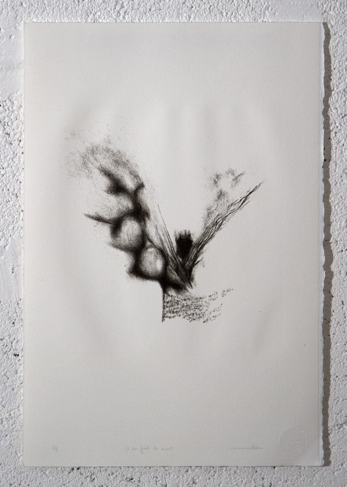 """""""Je suis faite des morts"""", lithographie 6/8, 33x50 cm, 2017, photo"""