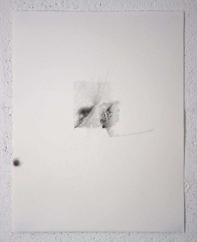 """""""Ce que trouble le silence"""", dessin, 50,5x65,5 cm, graphite sur BFK Rives, 2019"""