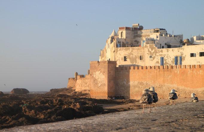 Vue sur la forteresse d'ESSAOUIRA.